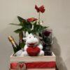 caixa enamorats cava-50€